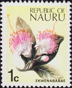 Commonwealth Stamp Store online Retailers of fine quality postage stamps British and Empire Stamps for Sale we Buy Stamps Take a LOOK! Buy Stamps, Flower Stamp, South Pacific, Stamp Collecting, Mail Art, Beautiful Islands, Australia Travel, Postage Stamps, Commonwealth