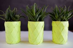 Pineapple planter idea
