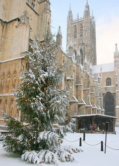 Christmas, Canterbury Cathedral England