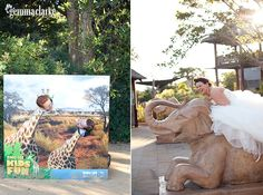 Erin and Craig's Wedding - Bradleys Head, Taronga Zoo and Athol Hall, Mosman - Gemma Clarke Photography
