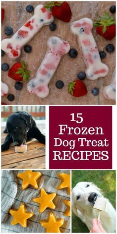 Dog Grooming Golden Retriever 15 Frozen Dog Treat Recipes for your dog to munch on all summer long!Dog Grooming Golden Retriever 15 Frozen Dog Treat Recipes for your dog to munch on all summer long! Puppy Treats, Diy Dog Treats, Homemade Dog Treats, Summer Dog Treats, Treats For Puppies, Healthy Treats For Dogs, Healthy Foods, No Bake Dog Treats, Horse Treats