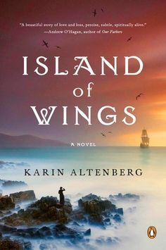 Island of Wings: A Novel by Karin Altenberg http://www.amazon.com/dp/B00967QBE2/ref=cm_sw_r_pi_dp_8TEzvb1AQ5633