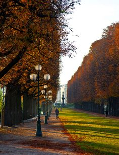 Paris in the fall, can't wait for thanksgiving