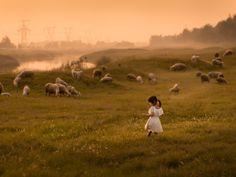 once in China by Iwona Podlasińska - Photo 227500403 / 500px