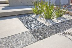 Textures create a point of interest in a concrete courtyard.