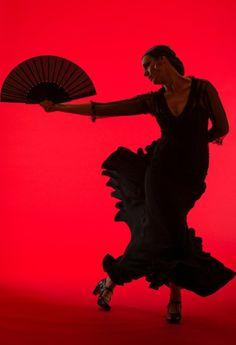 photos of flamenco dancers Spanish Dancer, Spanish Art, Spanish Style, Tango, Dance Images, Dance Photos, Dance Art, Dance Music, Dance Like No One Is Watching