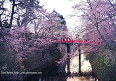 Hirosaki Castle Moat