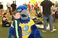 Burli hugs a child, burlington Bayhawks custom mascot costume Mascot Costumes, Photo Galleries, Community, Sweatshirts, Children, Hugs, Celebrities, Marketing, Young Children