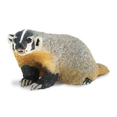 This is the American Badger North American Wildlife from Safari. Our Wild Safari North American Wildlife collection represents the many animals, great and small, that call North America home. Professi