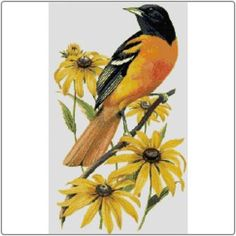 State Symbols in Cross Stitch - Maryland Baltimore Oriole and Black-Eyed Susan #Maryland
