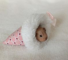 Miniature Clay Sculpted Guinea Pig in a by lovinclaydolls on Etsy, $16.00