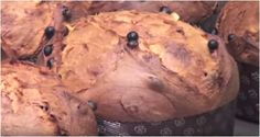 Fair of the famous milanese Christmas cake Panettone
