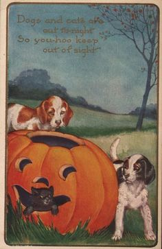 Two dogs are surprised when a cat peeks out of a jack o' lantern on this vintage Halloween postcard.