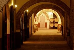 Vinícola Navarra - La bodega   Domecq Bodegas