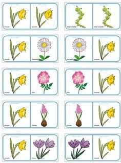 Planche des Dominos sur les fleurs de printemps et d'été Pretty Flower Names, Pretty Flowers, Spring Activities, Activities For Kids, Preschool Education, Plantation, Kids And Parenting, Planting Flowers, Dominos