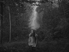 Jean Cocteau's Beauty and the Beast ( La Belle et la Bete)