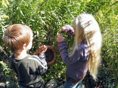 Teaching your kids about herbs