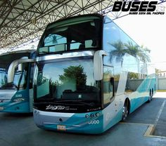 Bus City, Luxury Bus, New Bus, Double Decker Bus, Trailers, Mode Of Transport, Bus Driver, Locomotive, Cars And Motorcycles