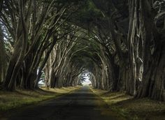 Point Reyes by Janet Kopper on 500px