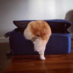 . . . not leaving me again . . .