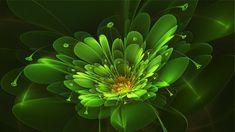 April Green Flower  Flower created with fraktal editors #fractal design#wallpaper#shining flower, abstract,floral,gfrden bed