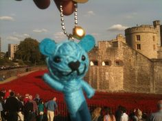 WW1 poppies at The Tower of London with Voodoo Blue