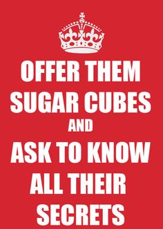 Offer them sugar cubes and ask to know all their secrets.