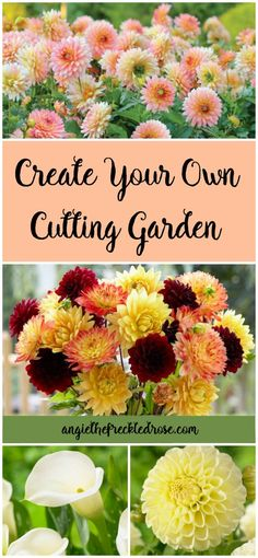 Creating A Cutting Garden With Giveaway! I have always fantasized about having my very own cutting garden. I've definitely grown many flowers that look like they are straight out of a floral fairytale. These include dahlias, gladiolus and calla lilies. Cut Flower Garden, Flower Garden Design, Beautiful Flowers Garden, Flower Farm, Cut Garden, Flower Gardening, Flower Garden Plans, Flower Plants, Olive Garden