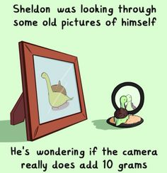 Sheldon was looking through some old pictures of himself