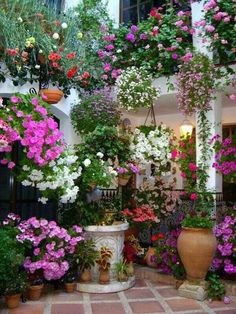 Thrilling About Container Gardening Ideas. Amazing All About Container Gardening Ideas. Love Garden, Dream Garden, Container Plants, Container Gardening, Gardening Tools, Container Flowers, Organic Gardening, Pot Jardin, Pot Plante