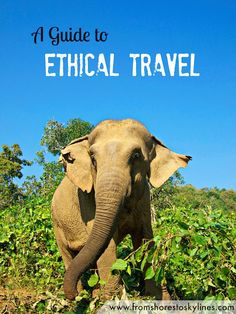 A Guide to Ethical Travel - how you can still have fun! @shoreskylines
