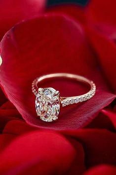 30 The Most Beautiful Gold Engagement Rings ❤️ gold engagement rings rose gold oval cut pave band ❤️ See more: http://www.weddingforward.com/gold-engagement-rings/ #weddingforward #wedding #bride #engagementrings #goldengagementrings