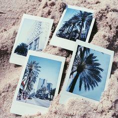 #sundancebeach #destinationbikini