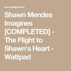 Shawn Mendes Imagines [COMPLETED] - The Flight to Shawn's Heart - Wattpad