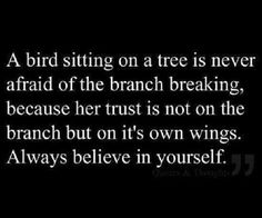 Fly Like A Bird, Spread Your Wings Like You Never Have Before.