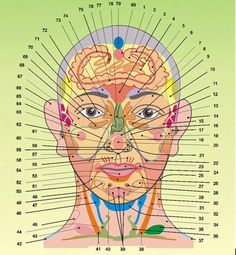 Reflexology from GHL: Face   Global Health Lab is the ultimate place to buy high-end nutrition and personal care products