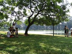 Ibirapuera - São Paulo, Brasil. I spent many morning & afternoons in this park near the pond/fountain ☻