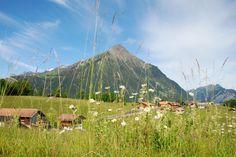 Mount Niesen in the Bernese Oberland (Kanton Bern)