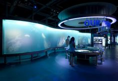 National-Mississippi-River-Museum-and-Aquarium