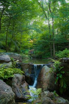 Garvan Woodland Gardens in Hot Springs, Arkansas, USA