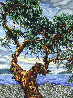 Trail Island Arbutus, oil on canvas by Julie Johnston.