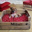 Personalised Wood Crate Small Dog Or Cat Bed