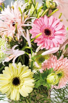Close-up of a colourful gerbera bouquet #pinkgerberas #floral #flower #whitegerberas #inspiration #colouredbygerbera #dutchgerbera