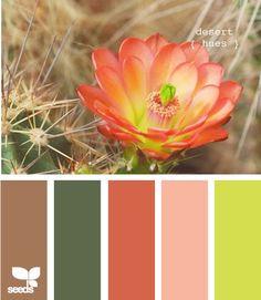 Desert hues my favorite color palette! Colour Schemes, Color Combos, Color Patterns, Colour Palettes, Cactus E Suculentas, Ceiling Murals, Desert Colors, Design Seeds, Colour Board