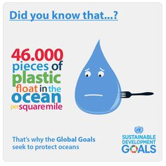 United Nations Environment Programme (UNEP).