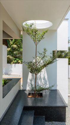 Garden Architecture, Amazing Architecture, Interior Architecture, Interior Garden, Home Interior Design, Tree Interior, Hale House, Architectural Design Studio, Architectural Trees