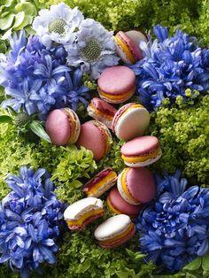 Macaron Love! on Pinterest | Macaroons, Macaron Recipe and Pink ...