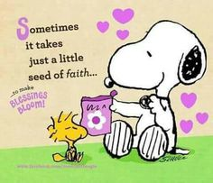 Seed of faith Charlie Brown Cafe, Charlie Brown Y Snoopy, Snoopy Love, Snoopy And Woodstock, Snoopy Hug, Snoopy Images, Snoopy Pictures, Peanuts Quotes, Snoopy Quotes