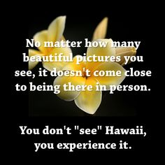 """No matter how many beautiful pictures you see, it doesn't come close to being there in person. You don't """"see"""" Hawaii, you experience it.  Quote submitted by Tammy Ferriola Owens on Facebook."""