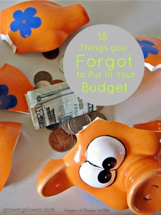 18 Items You Forgot to Put in Your Budget |GrowingSlower